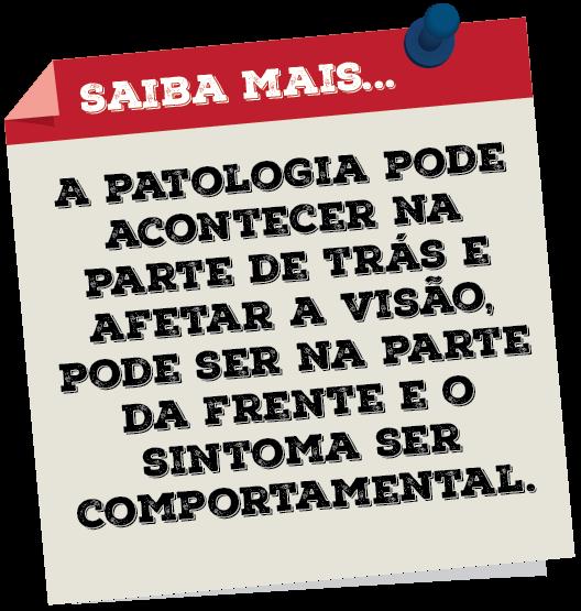 MAV - Saiba Mais